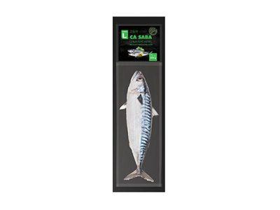 (CL) Cá saba 550g